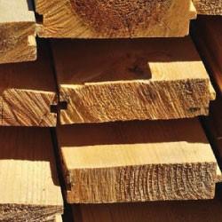 Passione per il legno, cultura della protezione