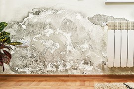 umidita di risalita dei muri