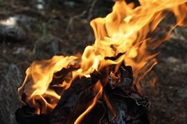 vernici per protezione dal fuoco